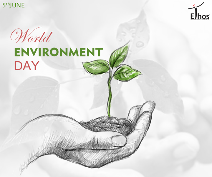 When we heal the earth, we heal ourselves!   #WorldEnvironmentDay #EthosIndia #Ahmedabad