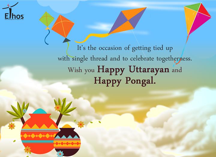 Celebrate togetherness this #festiveseason!  #EthosIndia #Ahmedabad #HappyUttarayan #Pongal #IndianFestival #FestiveWishes