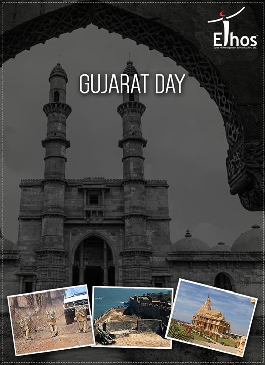 Ethos India,  GujaratDay, Gujarat, EthosIndia, Ahmedabad, EthosHR