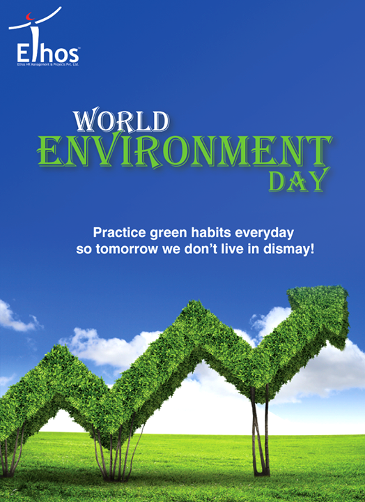 This #WorldEnvironmentDay let's grow more and more greenery around us.  #EnvironmentDay #EthosIndia #Ahmedabad #EthosHR #Recruitment