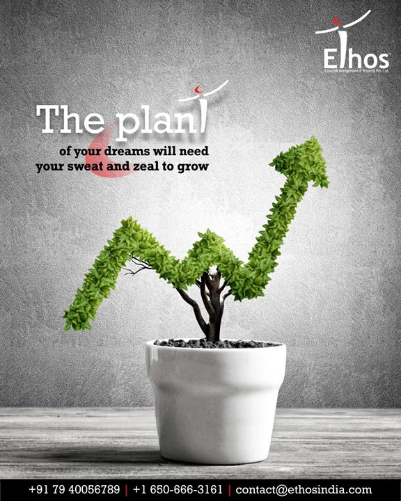 Sow the right seed, supply the right will power, nurture with your sweat and watch your dreams turn into reality.  We at Ethos India help you reap your desired aims.  #EthosIndia #Ahmedabad #EthosHR #Recruitment #CareerGuide #India