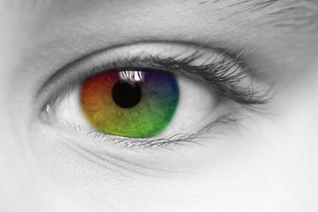 Mid-day thought : A Person who can explain color to Blind Man can explain any thing In Life..