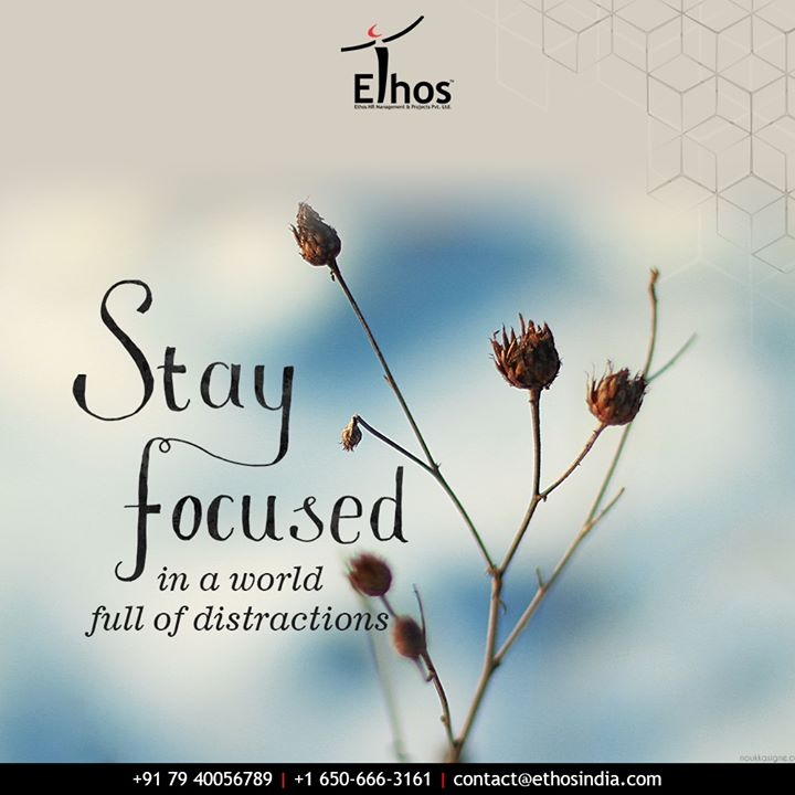 Ethos India,  ExpertCareerGuide, CareerOptions, CareerGrowth, EthosIndia, Ahmedabad, EthosHR, Recruitment, CareerGuide, India