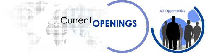 Current Opening @ Client Place of Ethos India -  Wealth Manager :-  Education: • Graduate / MBA (preferred) • AMFI Certified  Experience: • Sales experience of 2-4-6 yrs. • Experience in Investment firms, brokerage, Insurance companies., banks • Alternatively, sales experience in allied industries involving relationship management like hotels, high end time-share, large developers  Key Skills: • Good Interpersonal & communication skills. • Knowledge of banking products and services a plus point. • Good networking skills - ability to start relationships and build rapport. • Good analytical skills