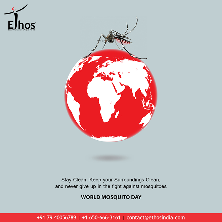 Stay clean, keep your surroundings clean, and never give up in the fight against mosquitoes.  #WorldMosquitoDay #Mosquitoes #Health #EthosIndia #Ahmedabad #EthosHR #Recruitment #CareerGuide #India