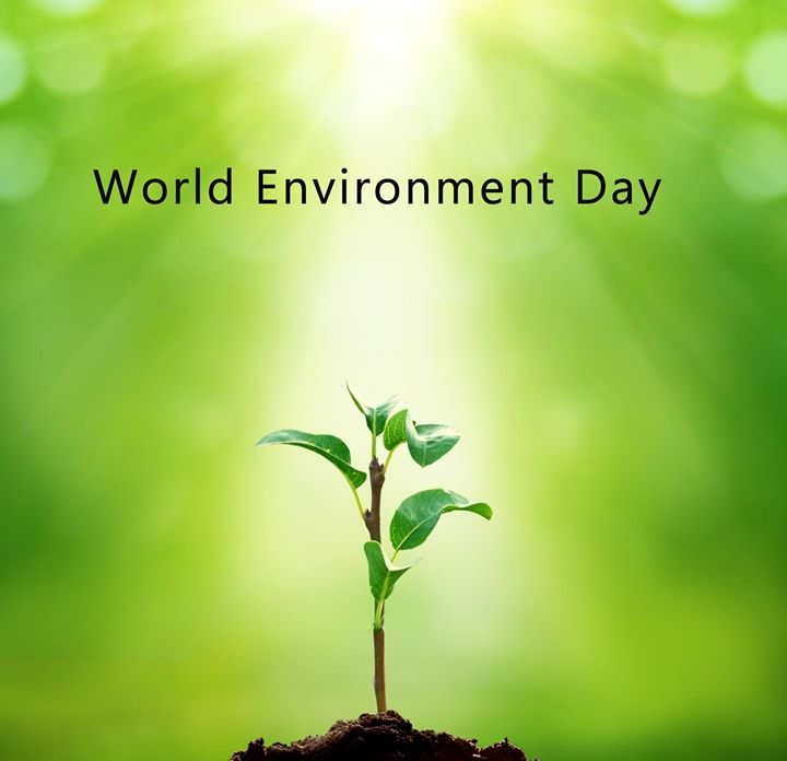 Happy environment day  save trees, water and reserve for the next generation. #environmentday