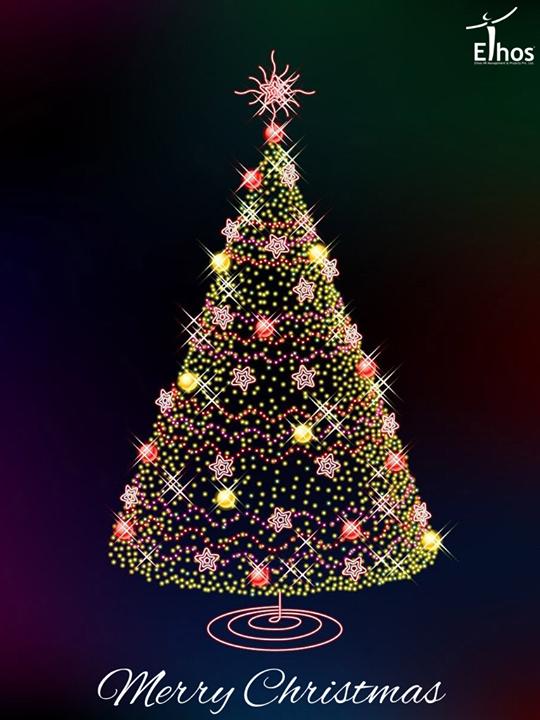 Ethos India,  Christmas